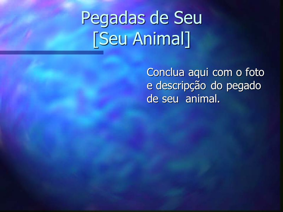 Pegadas de Seu [Seu Animal]